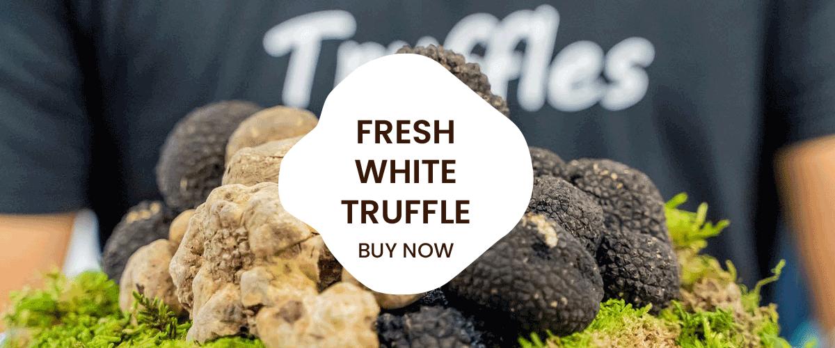 fresh white truffle
